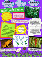 Biome Rainforest's thumbnail