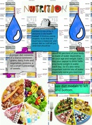 nutrition and diets's thumbnail