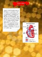 glog-circulatory system's thumbnail