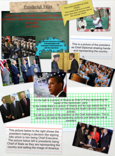 Presidential Roles Picture Glog