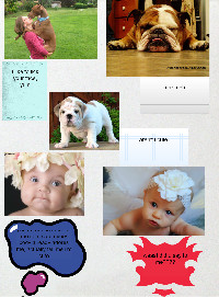 babies and dogs by grace gill 6th grade!!!!! miss u mrs bogosian 's thumbnail