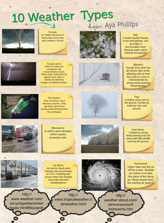 10 types of weather