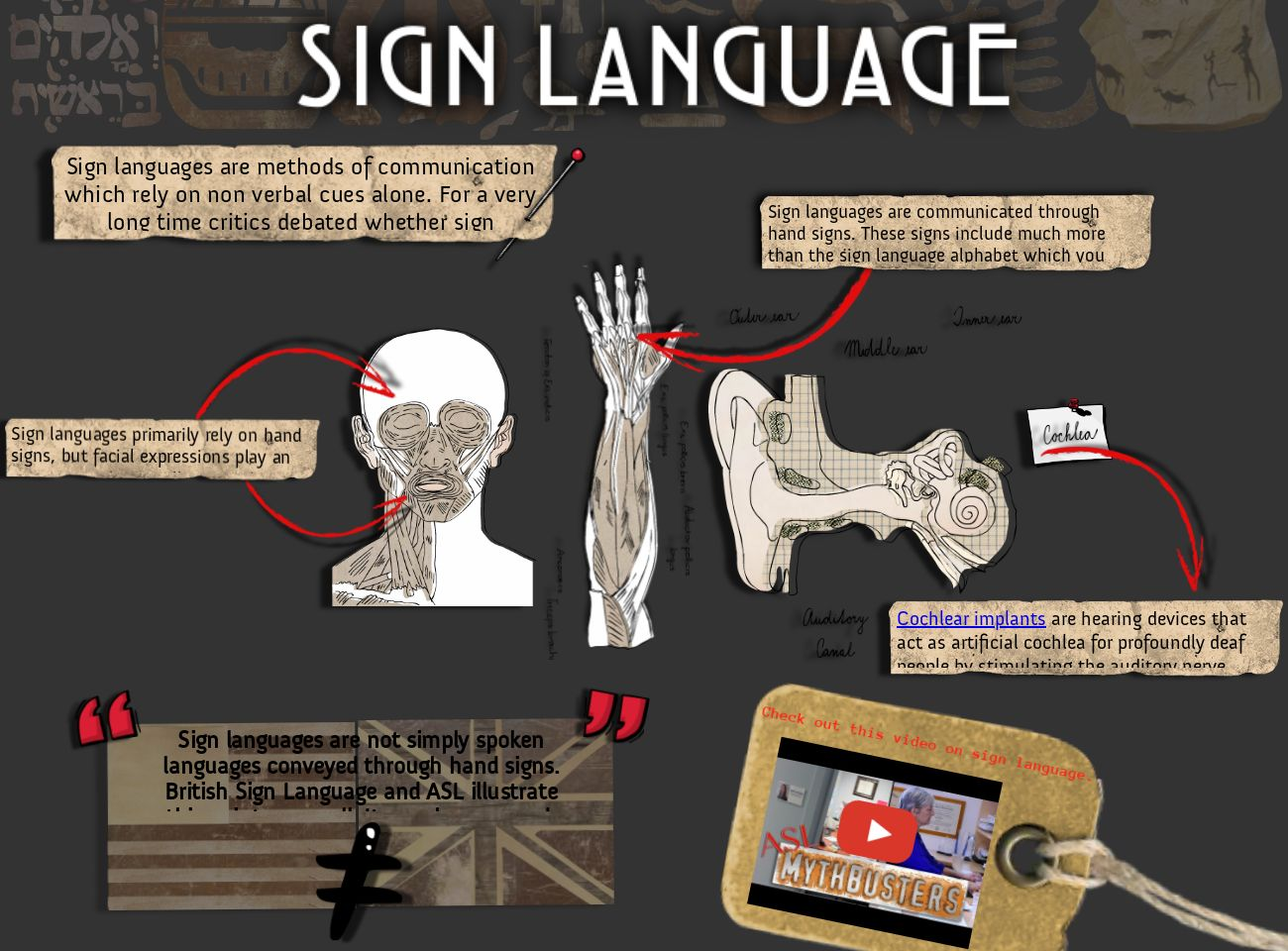 Seth Thompson's Sign Language Glog