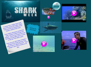 Shark Week's thumbnail