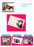 Puppies and Kittens's thumbnail
