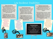 Low incidence disability's thumbnail