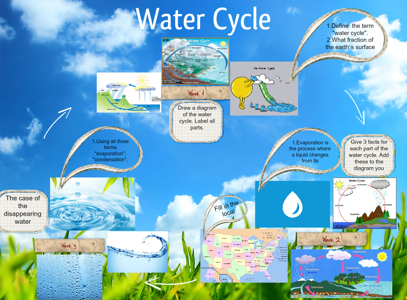 Water cycle bug cycle life lfe life lyfecicle glogster edu water cycle bug cycle life lfe life lyfecicle glogster edu interactive multimedia posters ccuart Gallery