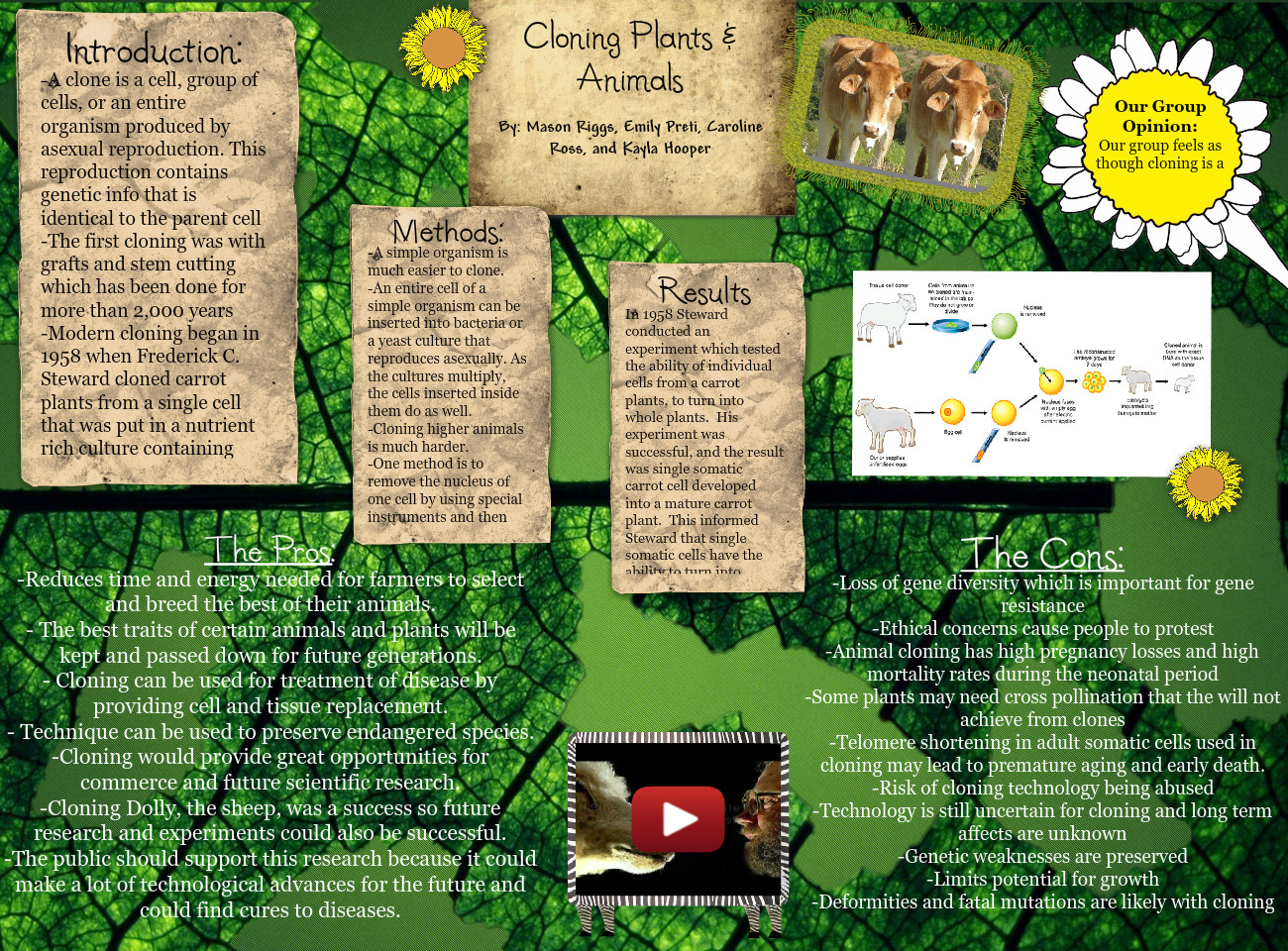 [2015] Caroline Ross 1B (AP Bio 1B): Cloning Plants And Animals