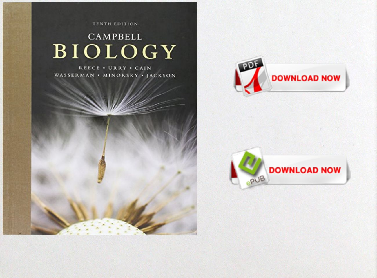 Free download pdf ebook campbell biology 10th edition text free download pdf ebook campbell biology 10th edition fandeluxe Images