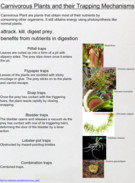 Carnivorous Plants and their Trapping Mechanisms's thumbnail