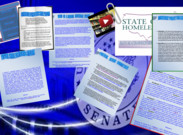 Bonnie Hicks Running For US Senate 2013's thumbnail