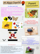 All about insects's thumbnail