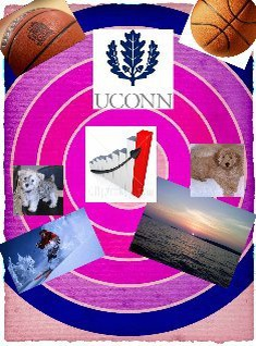 My Favorites