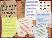 Bilingualism and Home Language Use's thumbnail