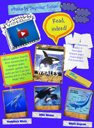Whales by Seymour Simon's thumbnail