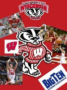 wisconsin badgers's thumbnail